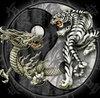 avatar di superrobyy