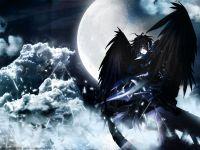 avatar di yusei99