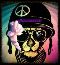 avatar di Guadomaster