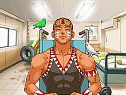 Immagine 5 del gioco Phoenix Wright: Ace Attorney - Justice For All per Nintendo DS