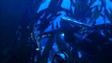 Immagine 1 del gioco Tomb Raider: Underworld per Playstation 3